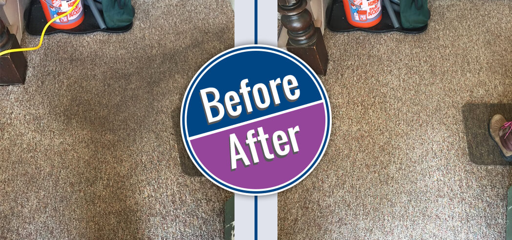 before after gallery byrnes chem dry carpet cleaning